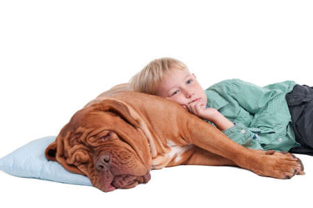 two floors: Little boy lying on a big dogue de bordeaux