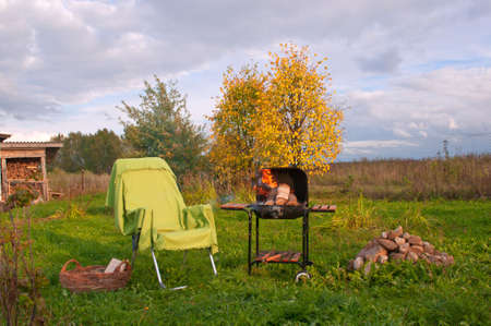 Homely Settings for a Picnic in the Russian country Stock Photo - 11697256