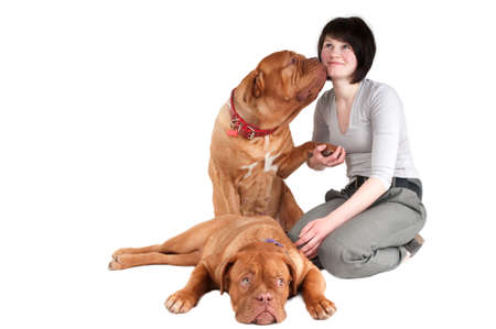 Big dogue de bordeaux givig a kiss to its master photo