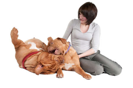 missing bite: Young woman and her two playing dogs sitting on the floor Stock Photo