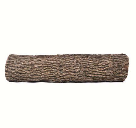 tronco: Sola pieza de madera oscura, aislados en fondo blanco