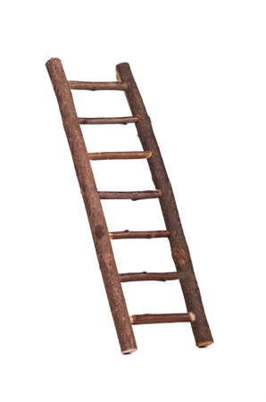 backstairs: Mini inclined ladded with hooks on it hold by hand