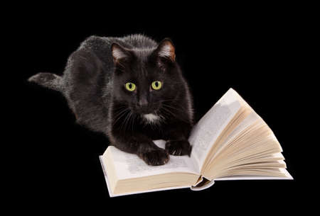 Black cat reading a book lying on black background photo