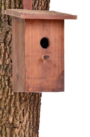 Wooden bird house (starling house) on a tree trunk isolated on white background photo