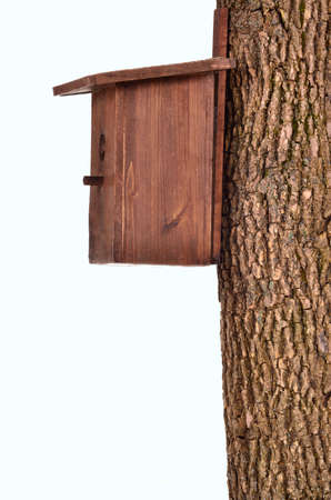 Wooden starling-house on a bole isolated on white background photo