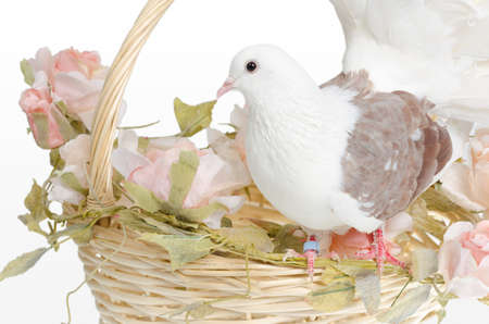 White dove is alight n a wedding basket with flowers photo