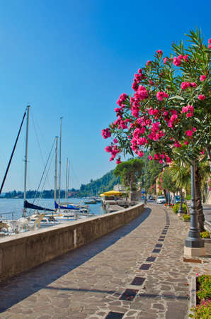 esplanade: Alley with flower covered trees by a lake marina, Italy Stock Photo