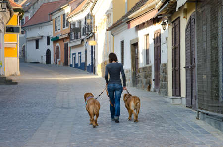 Girl is walking in the old street with two big dogs photo