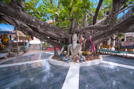 Huge tree in Wat Phra Yai temple, Koh Samui island, Thailand photo