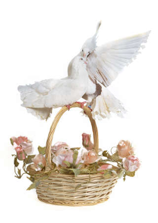 Basket with wedding flowers and doves, studio shot Stock Photo - 11550623