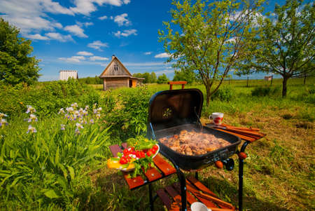 garden party: BBQ in the garden on clear summer day