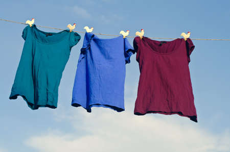 clothes pegs: A group of female t-shirts hanging on string against blue sky.