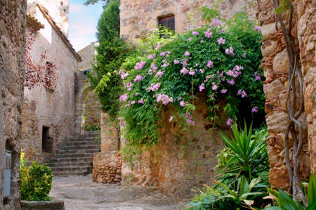 city alley: Summer garden in the medieval town of Peratallada, Spain. Stock Photo