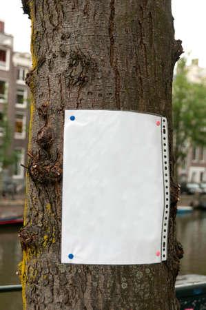 Feuille de papier vierge cloué à l'arbre - ajoutez votre annonce ici