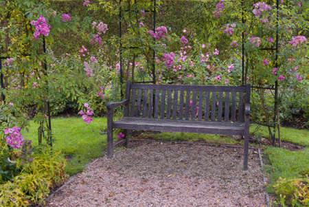 Beautiful peaceful garden with a bench surrounded by pink roses photo