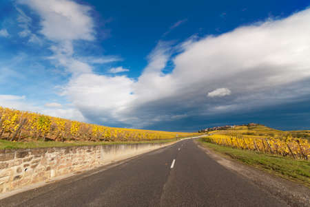 wine road: Scenic wine route country road in Alsace, France