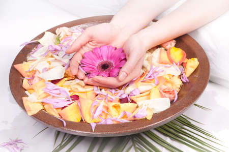 Luxury manicure - woman's hands in a bowl of water at petals photo