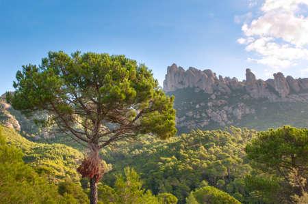 conglomeration: Mountains Montserrat, Catalonia, Spain