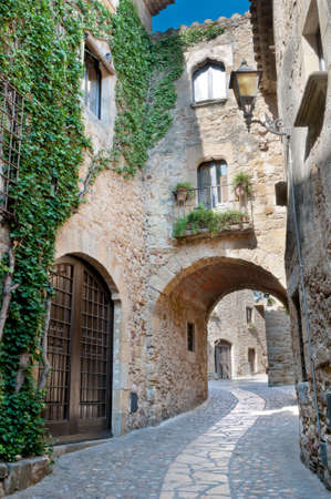 Ivy covered wall on a narrow street in Peratallada, Spain