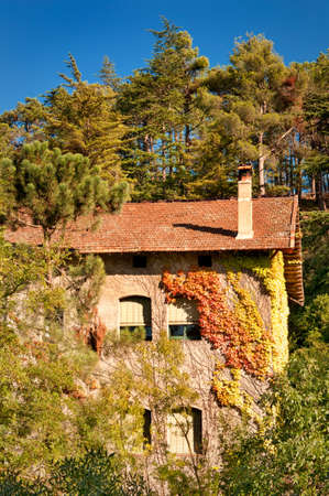 House wrapped in autumn ivy in the forest, Spain