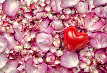 Pink rose petals background with red heart photo