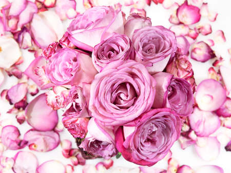 Pink rose bouquet on rose petals background Stock Photo - 12615841