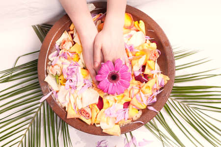 handcare: Hands relaxing in bowl of water with rose petals