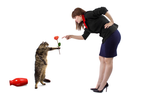 frolic: woman scolding pet cat that toppled a flower vase Stock Photo