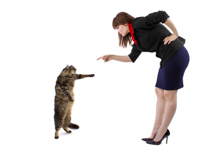 cat performing a trick standing up in front of owner photo