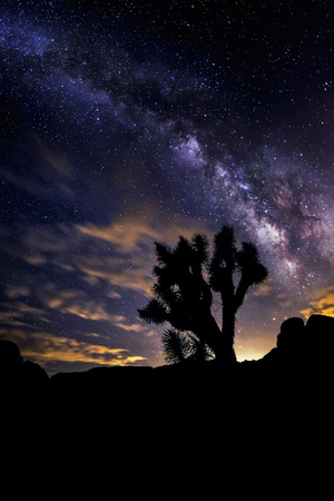 joshua: View of the Milky Way Galaxy at the Joshua Tree National Park.  The image is an hdr of astro photography photographed at night.  It depicts science and the divine heaven.