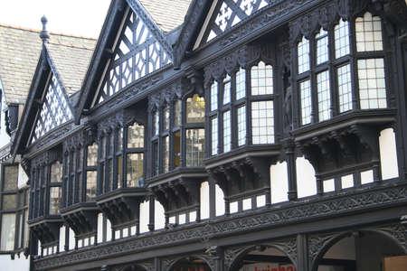 tudor: Tudor Style