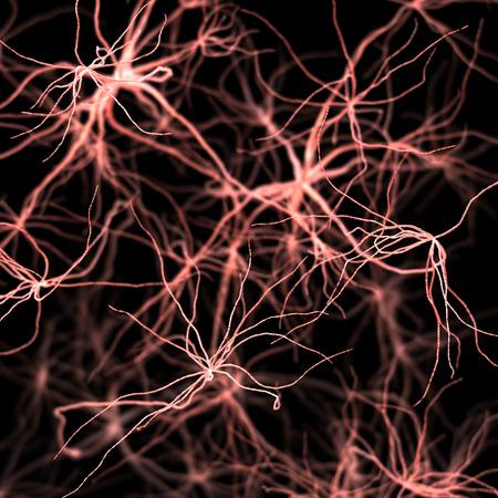 Fantasie menselijk Nervous of bloed-systeem. Medische en wetenschap 3d illustratie
