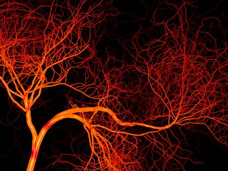 Nerveus of bloed systeem van de slagader en ader. Medische 3d illustratie