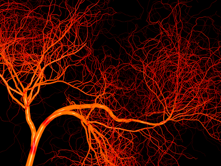 Nervous or blood system of artery and vein. Medical 3d illustration