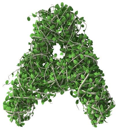 Groene alfabet gemaakt van bomen en bladeren. Seizoensgebonden zomer letter A
