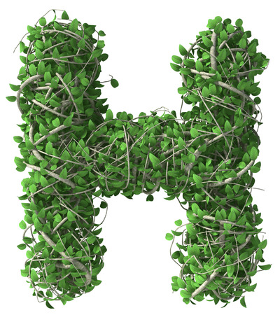 Green alphabet made of trees and leafs. Seasonal summer letter H