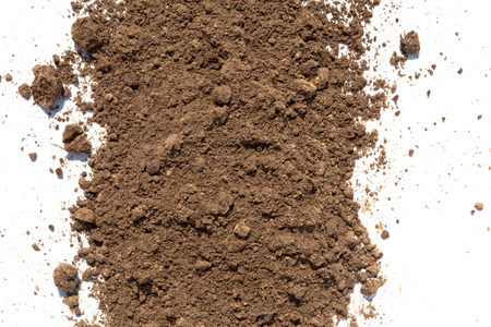 Light brown soil on white background Imagens - 37202140