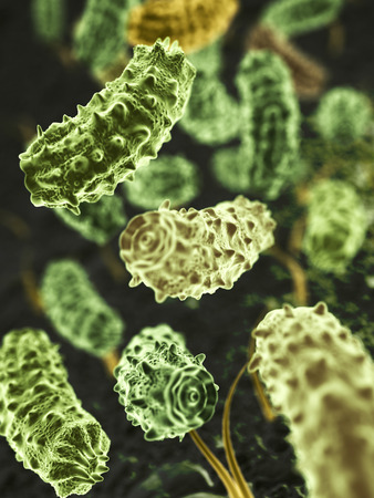 Fantasy microbes or bacteria or virus on abstract surface.  Medical and science 3d illustration