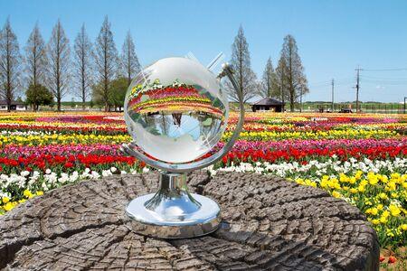 Scenery in the globe Фото со стока