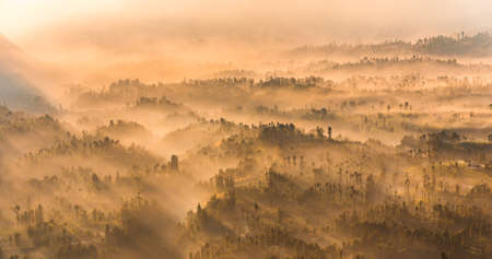 Cemoro Lawang; small village in morning mist. Which situated on the edge of massive north-east of Mount Bromo, East Java, Indonesia Banque d'images