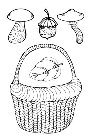 Vector wicker basket with outline forest mushroom in black isolated on white background. Boletus, chanterelles, porcini, russula mushrooms in contour style for autumn design and coloring book. autumn leaf.