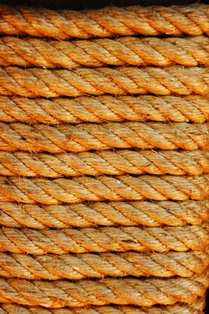 rope light brown. photo
