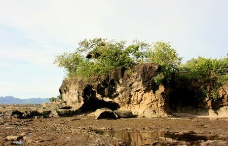 Rocky cliff in a coastal Stock Photo - 9837504