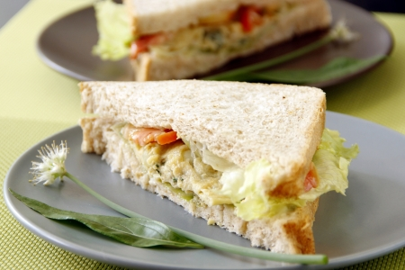 Egg sandwich garnish with herbs and vegetables  photo