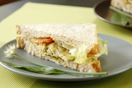 Egg sandwich cut into half garnish wish with fresh vegetables Stock Photo - 22110156