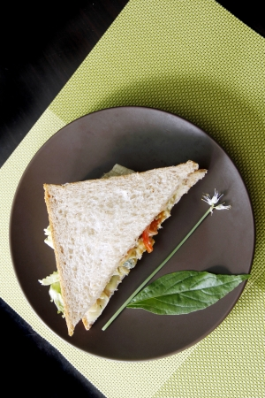 sandwitch: Egg sandwitch garnish with fresh vegatables and herbs