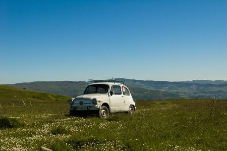 Old Fiat 600 in a green field