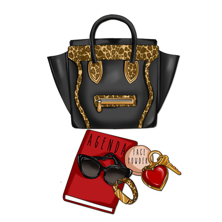 agenda: Raster Illustration of Black Leather and Animal Print with agenda, sunglasses, face powder and keys Stock Photo