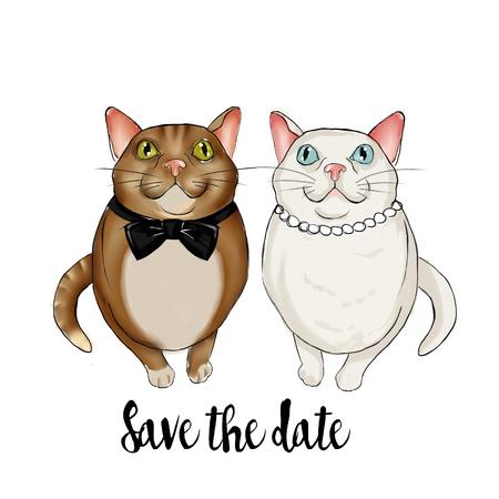 felines: Adorable couple of felines wearing bridal accessories