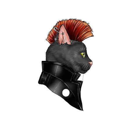 mohawk: hand drawn illustration of a cat dressed as a punk rock character